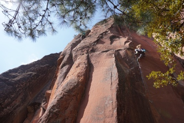 Gwen on The Locust (11+/12c)